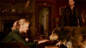 Do not pet the werewolf, silly human girl.